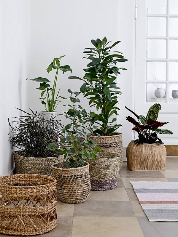 5 low cost ideas for home decoration