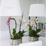 ORCHIDS AND THE DINING ROOM (7)